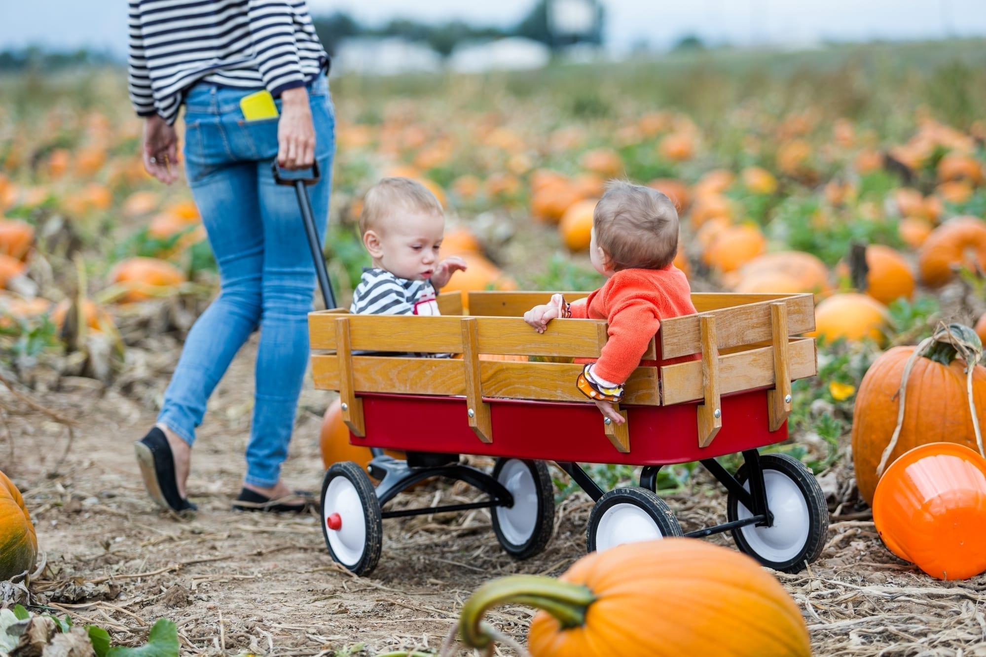little boys in wagon
